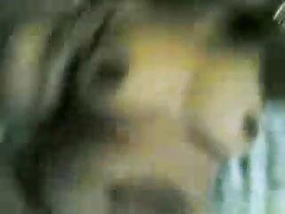 नली का सेक्सी बीएफ फिल्म फुल एचडी में खिलाड़ी X1