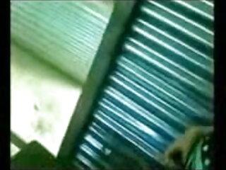 ललित गधा लैटिना फुल सेक्सी एचडी वीडियो फिल्म मुर्गा प्रेमी पीओवी